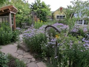 garden mainenance london