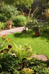 landscape gardener crystal palace croydon lambeth bromley
