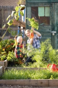 grow your own veg in london