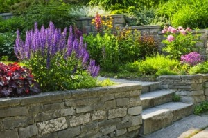 investing in a landscaped garden
