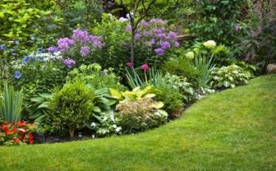 planting small garden