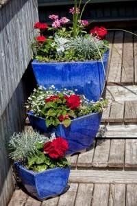 croydon garden services