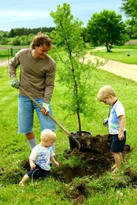 landscape gardeners london planting