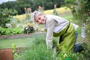 how to grow your own veg in london