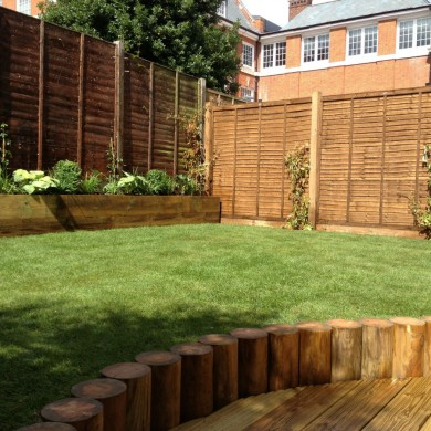 Gardener Tulse Hill South London
