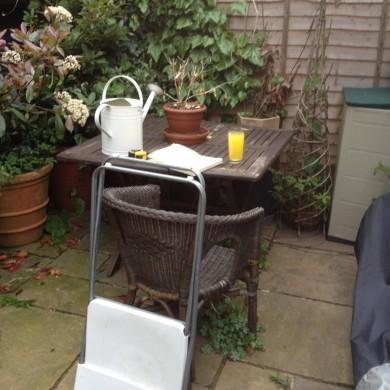 Garden designer Forest Hill London- before shots