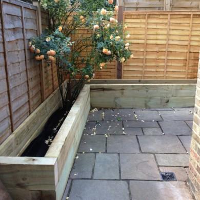 Forest Hill Small garden design