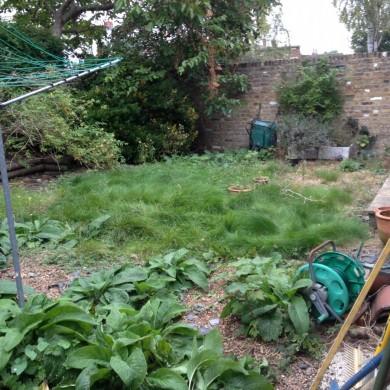 Blackheath gardening service