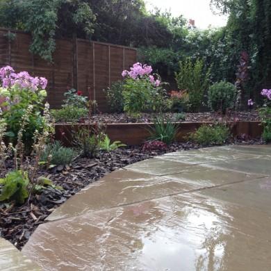 Landscaping plants at Blackheath garden